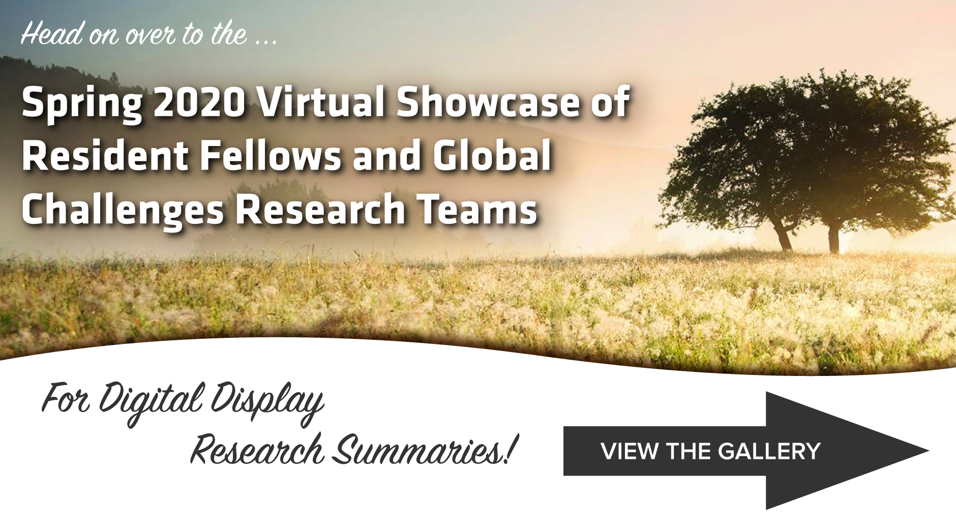 Spring 2020 Virtual Showcase of Resident Fellow and Global Challenge Research Teams