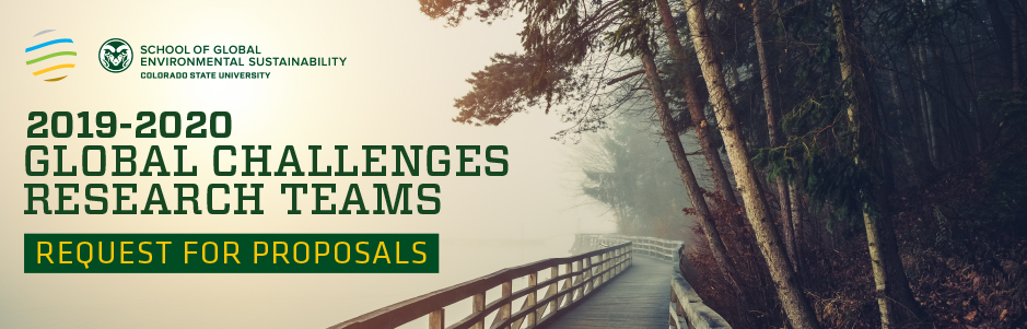 Global Challenge Research Team Request for Proposals banner image
