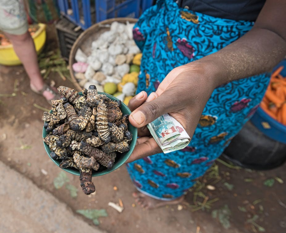 mopane worms (caterpillars) being sold at the market