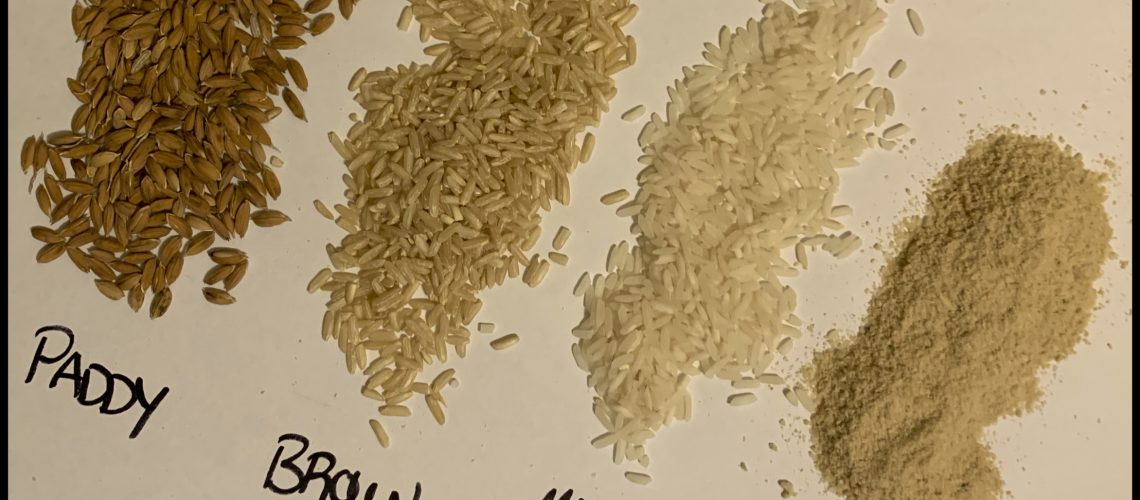 Four piles of different rice